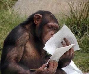 Читаем текст